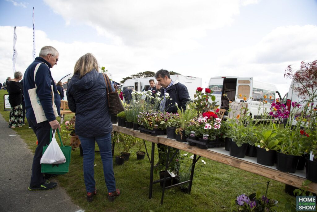 A selection of beautiful outdoor plants for sale at the Cornwall Home & Garden Show
